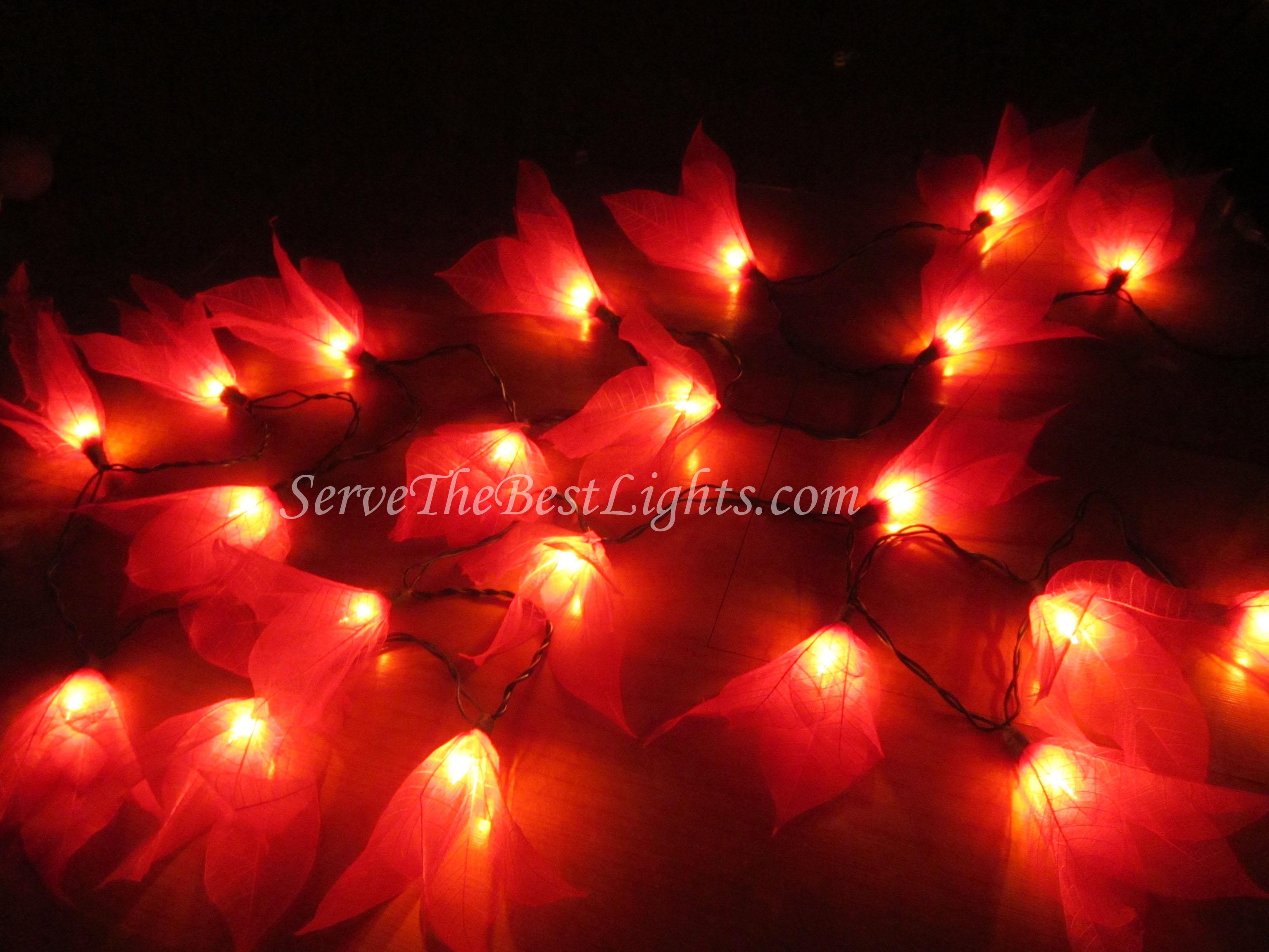 Red Flower String Lights : Red Leaf ServeTheBestLights