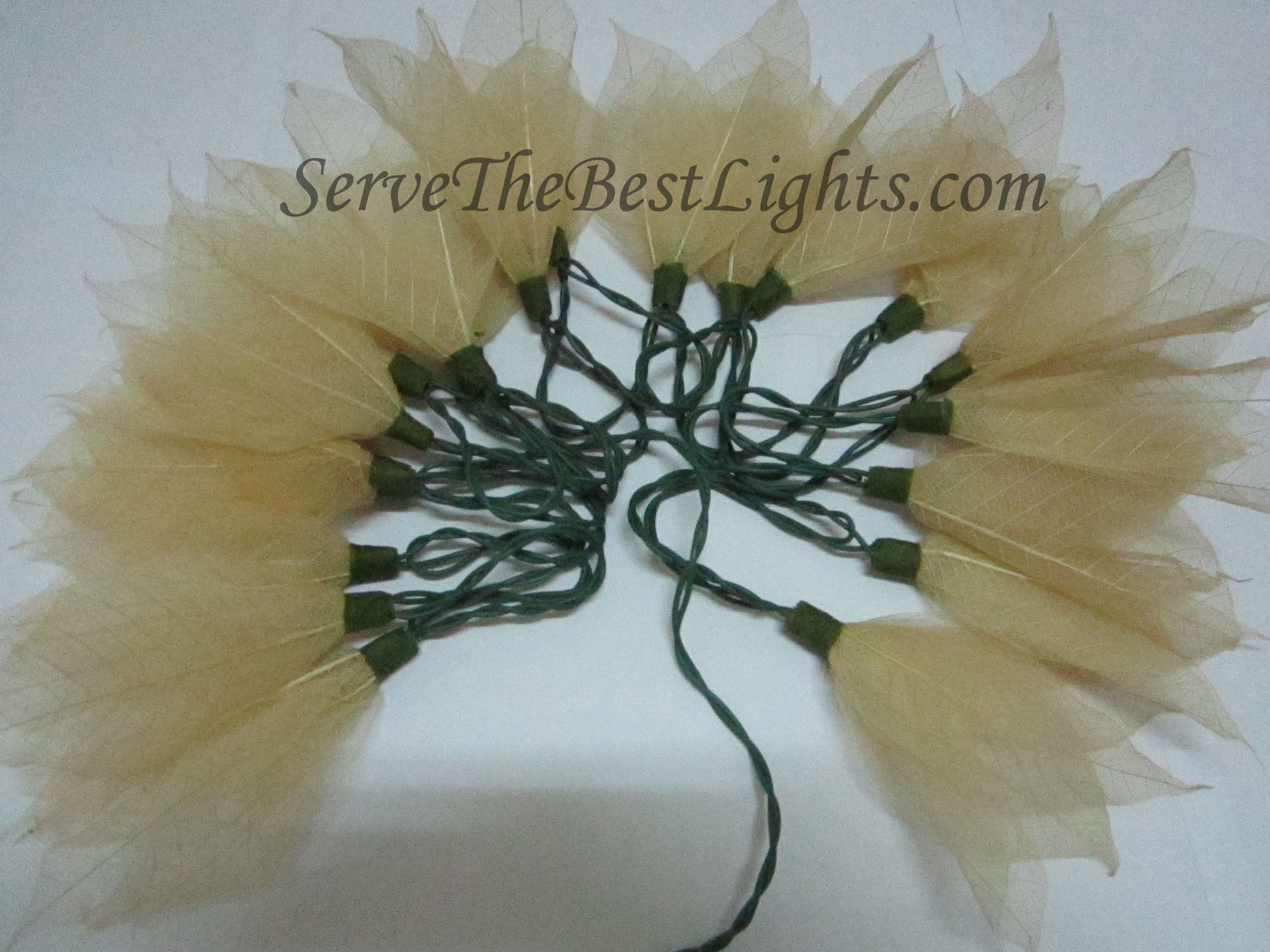 White Leaf Servethebestlights